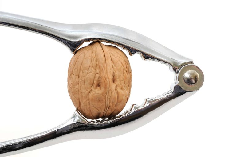 startup coach cracking a walnut as metaphor for business progression