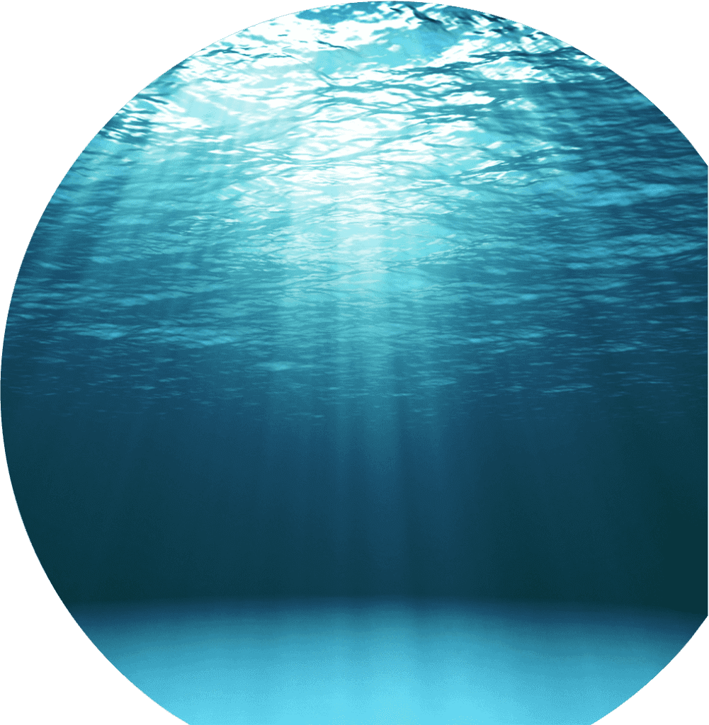 the lake of systemisation for business owners