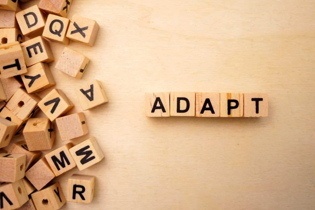 changing nature of accountancy businesses - adaption